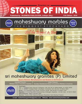 Business publication stones of india , Our XI  Edition is Successfully Published